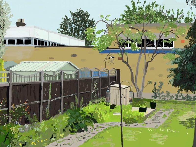 iPad painting of my garden